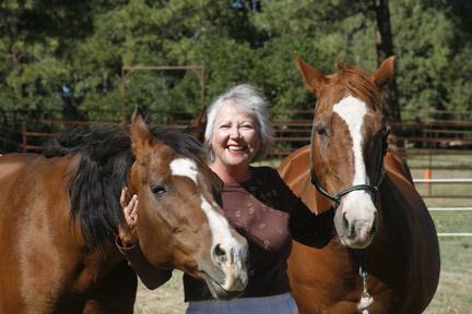 erika's horses